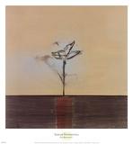 Zen Blossom II