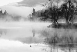 Fog on the Lake 2