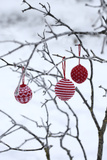 Branch in Winter with Christmas Bulbs  Cord Sample
