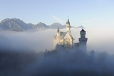 Germany  Bavaria  AllgŠu  Neuschwanstein Castle  Fog  Attraction  Structure  Outside  Autumn  King