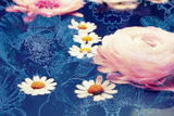 Photograph  Conceptual Layer Work of Buttercup  Daisy and Anemone Blossoms in Water