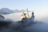 Germany  Bavaria  AllgŠu  Neuschwanstein Castle  Fog