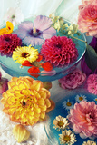 Table Decoration  Coloured Blossoms and Water Bowl