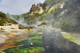 Hot Springs  Waimangu Volcanic Valley  Rotorua  Bay of Plenty  North Island  New Zealand