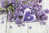 Lilac  Blossoms  Mauve  Violet  Heart