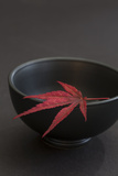 Still Life  Maple Leaf  Red  Bowl  Black  Still Life