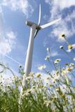 Schleswig-Holstein  Wind Turbine  Nature  Wind Power
