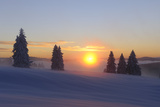 Germany  Baden-Wurttemberg  South Black Forest  Feldberg Area  Winter Scenery  Sunrise