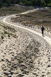 Lithuania  Curonian Spit  Perwalka  Drifting Sand Dune  Path