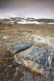 Norway  Spitsbergen  Kongsfjord  Camp Mansfield  Blomstrand  Landscape
