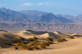 USA  Death Valley National Park  Mesquite Flat Sand Dunes