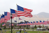 USA  Cemetery  Memorial-Day  Flags
