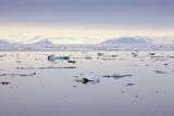 Norway  Spitsbergen  Drift Ice