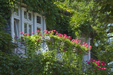 Germany  Weser Hills  Lower Saxony  Bad Pyrmont  Jugendstil Villa  Balcony  Flowers