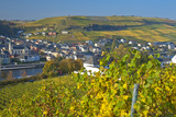 Luxembourg  Remich  Townscape  Vineyards  Autumn Colours