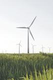 Wind Turbines  Wind Power Station  Renewable Energy  Wind Park  Parish Kronprinzenkoog