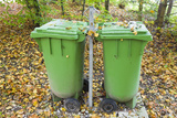 Dustbins  Forest  Autumn