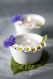 Small White Bowls with Floating Candles and Daisies