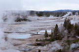 USA  Yellowstone National Park  Norris Geyser Basin