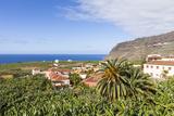 View from Tazacorte over Banana Plantations to the Sea  La Palma  Canary Islands  Spain  Europe