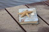 Still Life with Travel Diary  Wooden Jetty  Seashell  Starfish