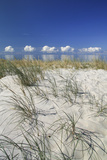 Lithuania  Curonian Spit  the Baltic Sea with Clouds
