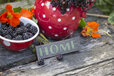 Blackberries and Blossoms  Red and White Dishes  Wooden Bank  Sign  Home