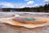 USA  Yellowstone National Park  Geyser Hill