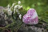 Heart  Flowers  Wild Chervil  Green