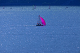 Italy  Lake Garda  Sailboat  Northern Italy  South Tirol  Lake  Waters  Boat  Sailing  Surfer