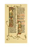 Illuminated Manuscript: Additional Ms 17  341 from the First Series
