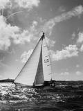 Thunderbird  Winner of the 635 Mile Yachting Classic Bermuda Rac