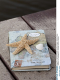 Still Life with Travel Diary  Wooden Jetty  Seashell  Starfish