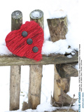 Red Heart on Old Fence  Winter  Snow