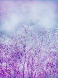 Composing  Trees  Layered with Texture and Paint in Violet and Blue