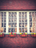 Window Front with Window Boxes of the Hotel 'Alt NŸrnberg' in Hamburg