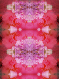 Photographic Layer Work from Flowers Symmetric Ornament