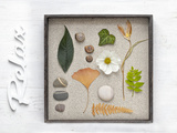 Still Life  Frames  Collection  Natural Materials  Stroke  'Relax'