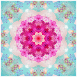 A Mandala from Flowers in Vintage Pastel Tones