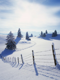 Germany  Bavaria  AllgŠu  Snow Scenery  Back Light  Alps  Mountains  Loneliness  Mountains  Winter