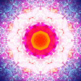Symmetric Energetic Floral Montage of Flowers