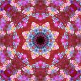 Mandala from Flowers
