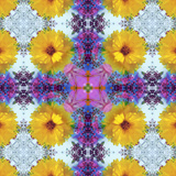 A Symmetric Ornament from Flowers  Photograph  Layer Work