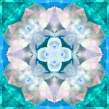 Symmetrical Photomontage of a White Orchid on Blue/Green Floral Ornament with Circle