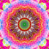 Mandala Ornament of Flowers  Composing