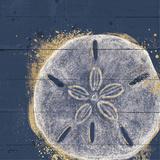 Calm Seas X Reproduction d'art par Janelle Penner