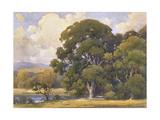 Marin Oaks