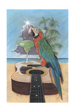 Macaw-Garita