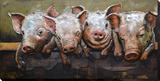 Pig Posse Metal Wall Art