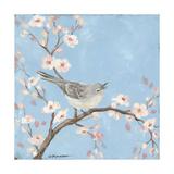 Blossom Bird I